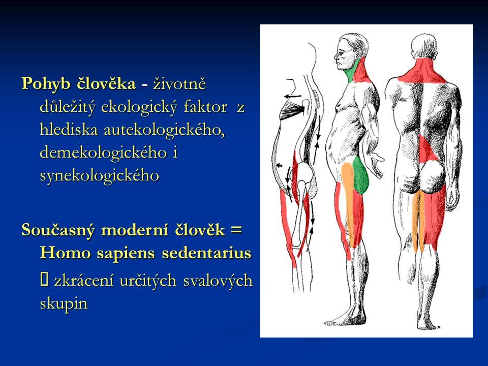 Pohyb člověka - životně důležitý ekologický faktor z hlediska autekologického, demekologického i synekologického Současný moderní člověk = Homo sapien