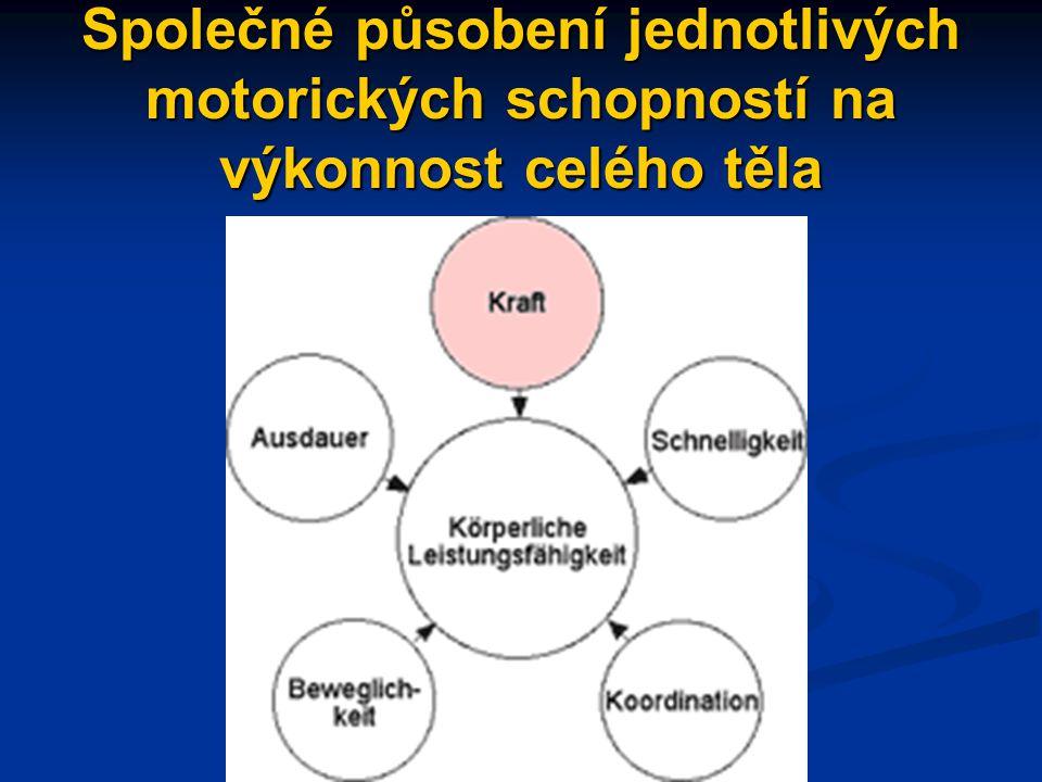 Společné působení jednotlivých motorických schopností na výkonnost celého těla