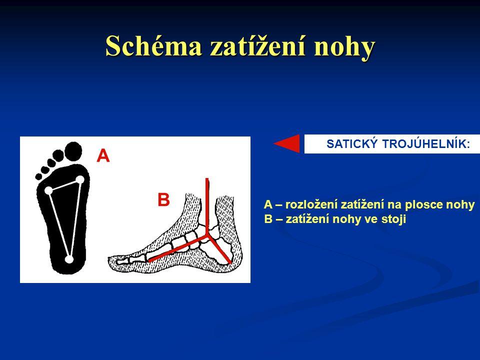 Schéma zatížení nohy A B SATICKÝ TROJÚHELNÍK: A – rozložení zatížení na plosce nohy B – zatížení nohy ve stoji