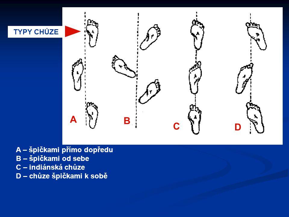 A B C D TYPY CHŮZE A – špičkami přímo dopředu B – špičkami od sebe C – indiánská chůze D – chůze špičkami k sobě