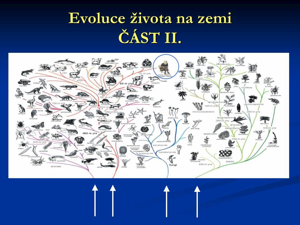 Evoluce života na zemi ČÁST II.