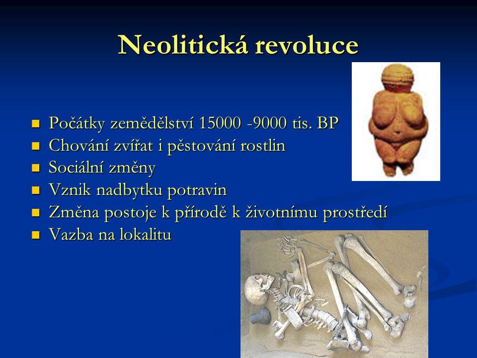 Neolitická revoluce Počátky zemědělství 15000 -9000 tis. BP Počátky zemědělství 15000 -9000 tis. BP Chování zvířat i pěstování rostlin Chování zvířat