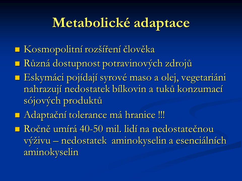 Metabolické adaptace Kosmopolitní rozšíření člověka Kosmopolitní rozšíření člověka Různá dostupnost potravinových zdrojů Různá dostupnost potravinovýc
