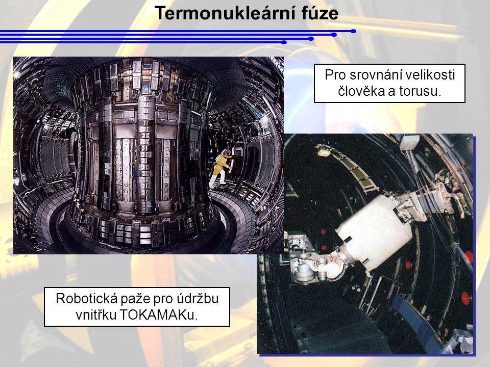 Pro srovnání velikosti člověka a torusu. Robotická paže pro údržbu vnitřku TOKAMAKu.
