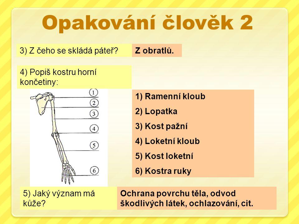 Opakování člověk 3 1)Nosní dutina 2)Hltan 3)Průdušnice 4)Průdušky 1) Co tvoří dýchací cesty.