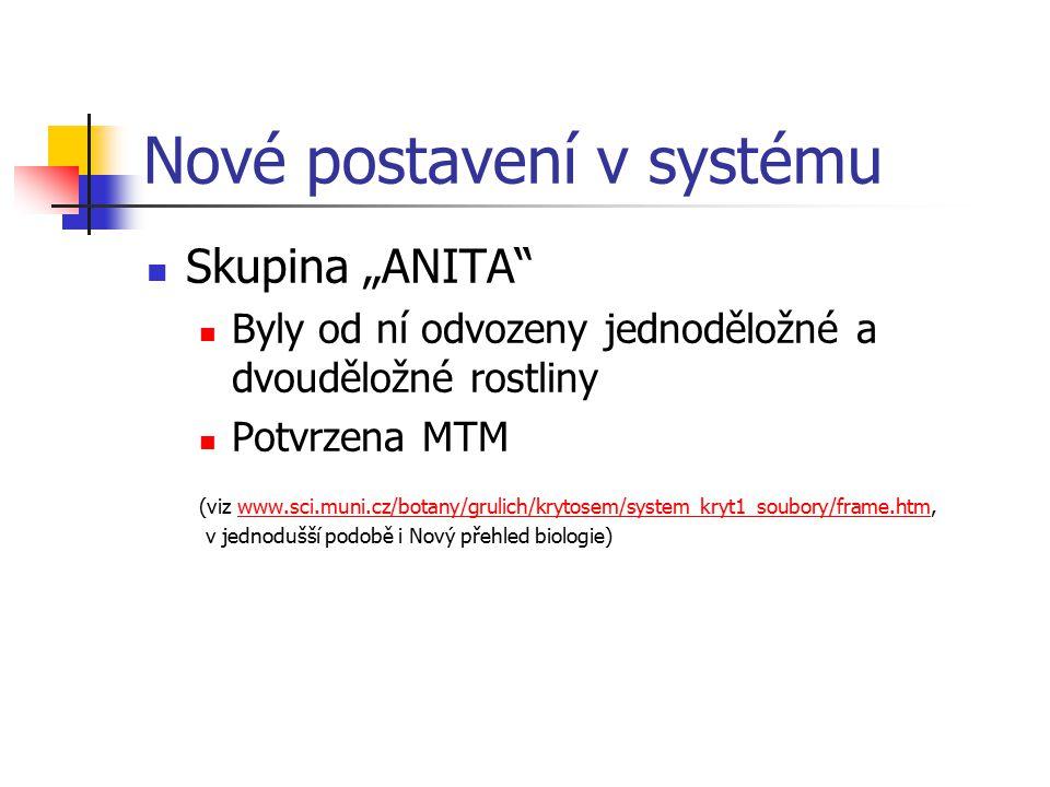 """Nové postavení v systému Skupina """"ANITA Byly od ní odvozeny jednoděložné a dvouděložné rostliny Potvrzena MTM (viz www.sci.muni.cz/botany/grulich/krytosem/system_kryt1_soubory/frame.htm,www.sci.muni.cz/botany/grulich/krytosem/system_kryt1_soubory/frame.htm v jednodušší podobě i Nový přehled biologie)"""