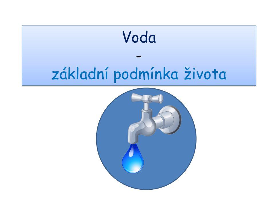Voda - základní podmínka života
