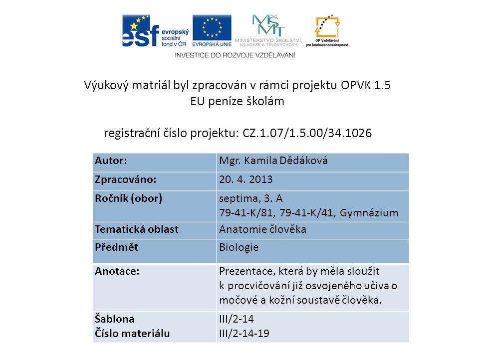 Autor: Mgr. Kamila Dědáková Zpracováno: 20. 4. 2013 Ročník (obor) septima, 3.