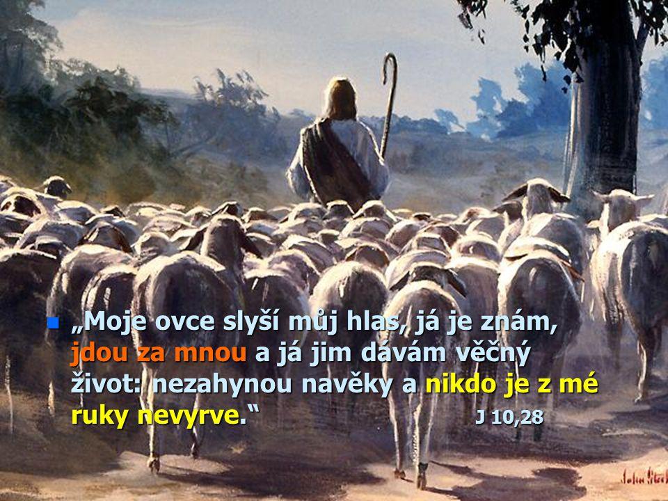 """n""""n""""n""""n""""Ti, kdo se dají vést Duchem Božím, jsou synové Boží."""" Řím 8,14 Působení Ducha svatého č.4 Proč jsem tady? Je to náhoda? Nebo je to Boží vedení"""