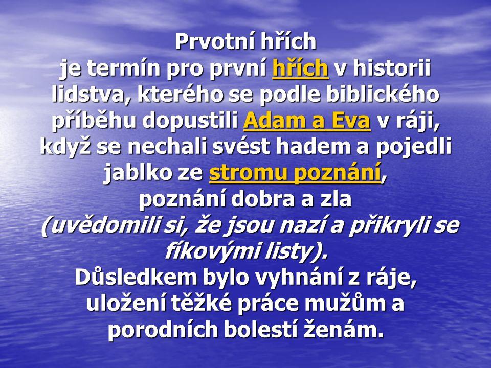Prvotní hřích je termín pro první hřích v historii lidstva, kterého se podle biblického příběhu dopustili Adam a Eva v ráji, když se nechali svést had