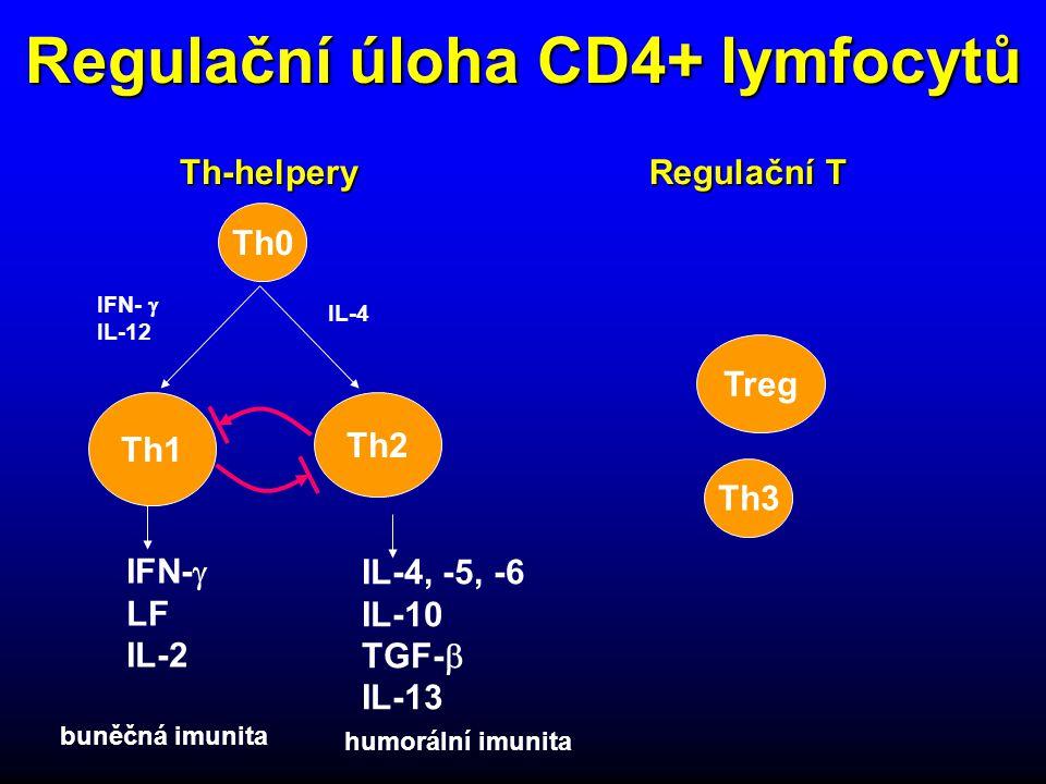 Regulační úloha CD4+ lymfocytů Th0 Th3 Th1 Th2 Treg IFN-  LF IL-2 IL-4, -5, -6 IL-10 TGF-  IL-13 IFN-  IL-12 IL-4 buněčná imunita humorální imunita Th-helpery Regulační T
