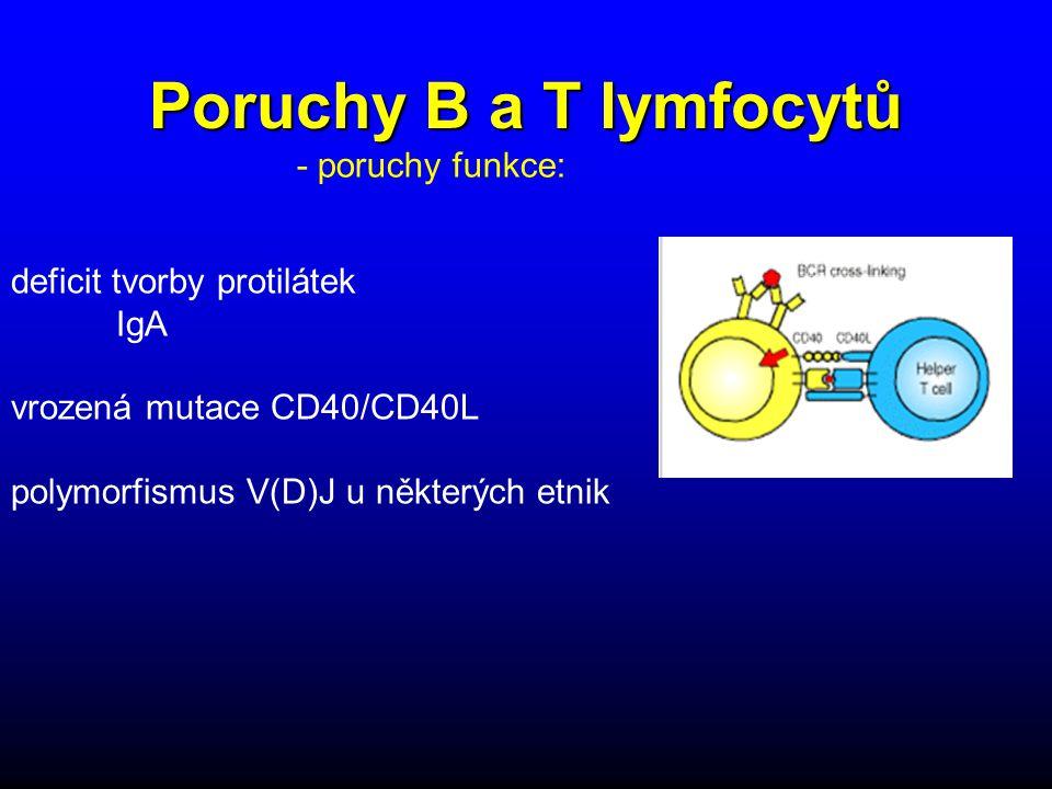 Poruchy B a T lymfocytů deficit tvorby protilátek IgA vrozená mutace CD40/CD40L polymorfismus V(D)J u některých etnik - poruchy funkce: