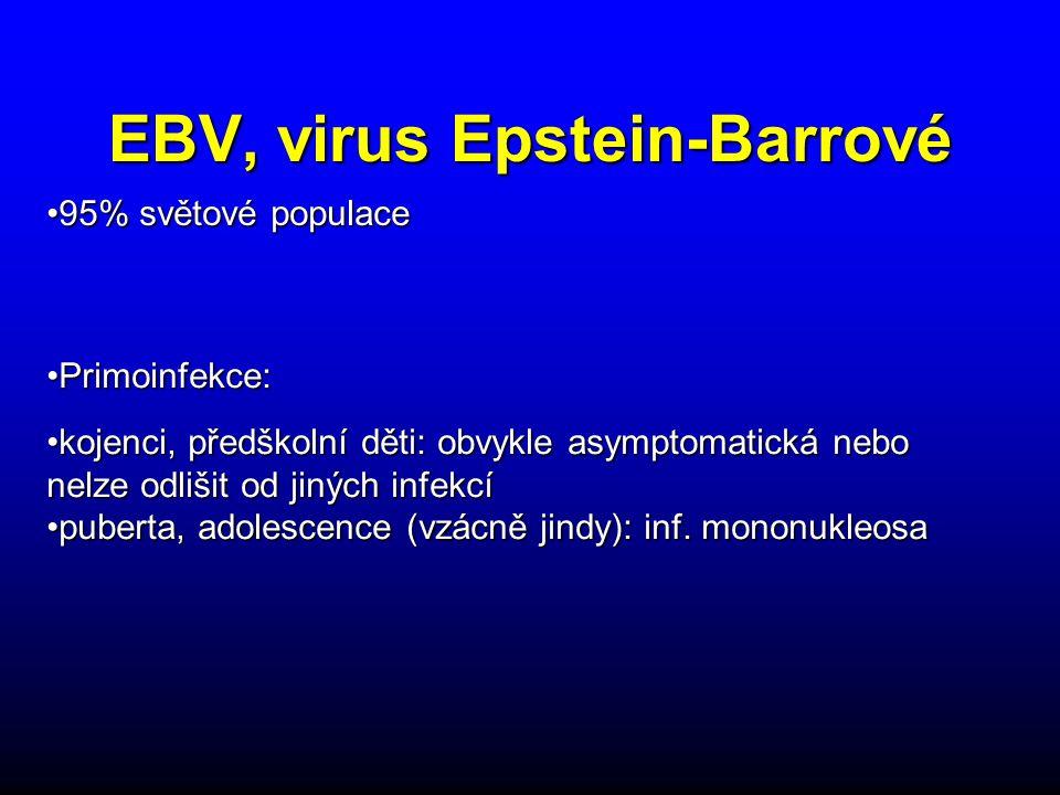 EBV, virus Epstein-Barrové kojenci, předškolní děti: obvykle asymptomatická nebo nelze odlišit od jiných infekcíkojenci, předškolní děti: obvykle asymptomatická nebo nelze odlišit od jiných infekcí puberta, adolescence (vzácně jindy): inf.