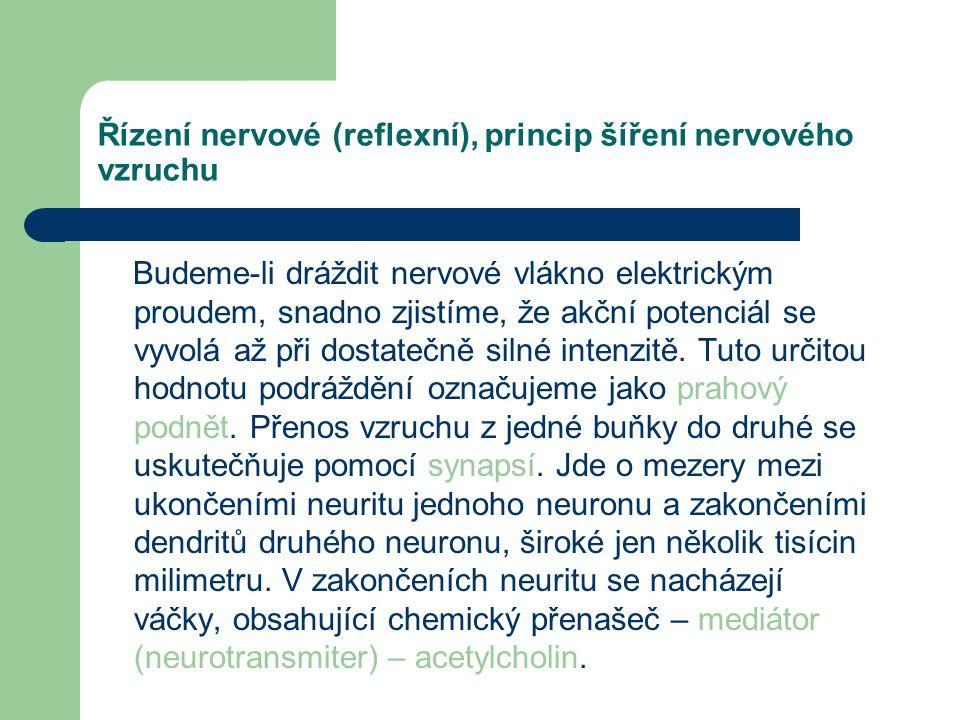 """Řízení nervové (reflexní), princip šíření nervového vzruchu Zvětšená žhnoucí """"obloha"""" sloučenin sodíku. Sodík je kolem nás všudypřítomný – od baterie"""