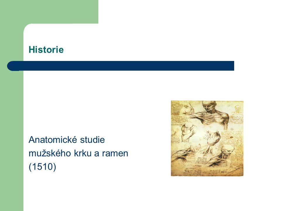 Historie Většinu anatomických kreseb včetně slavných studií srdce a embryí vytvořil během druhého pobytu v Miláně v letech 1506-1513. Studie Hlavní or