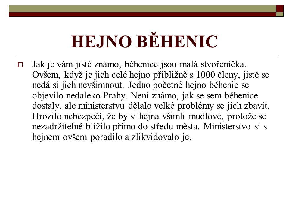 HEJNO BĚHENIC  Jak je vám jistě známo, běhenice jsou malá stvořeníčka.
