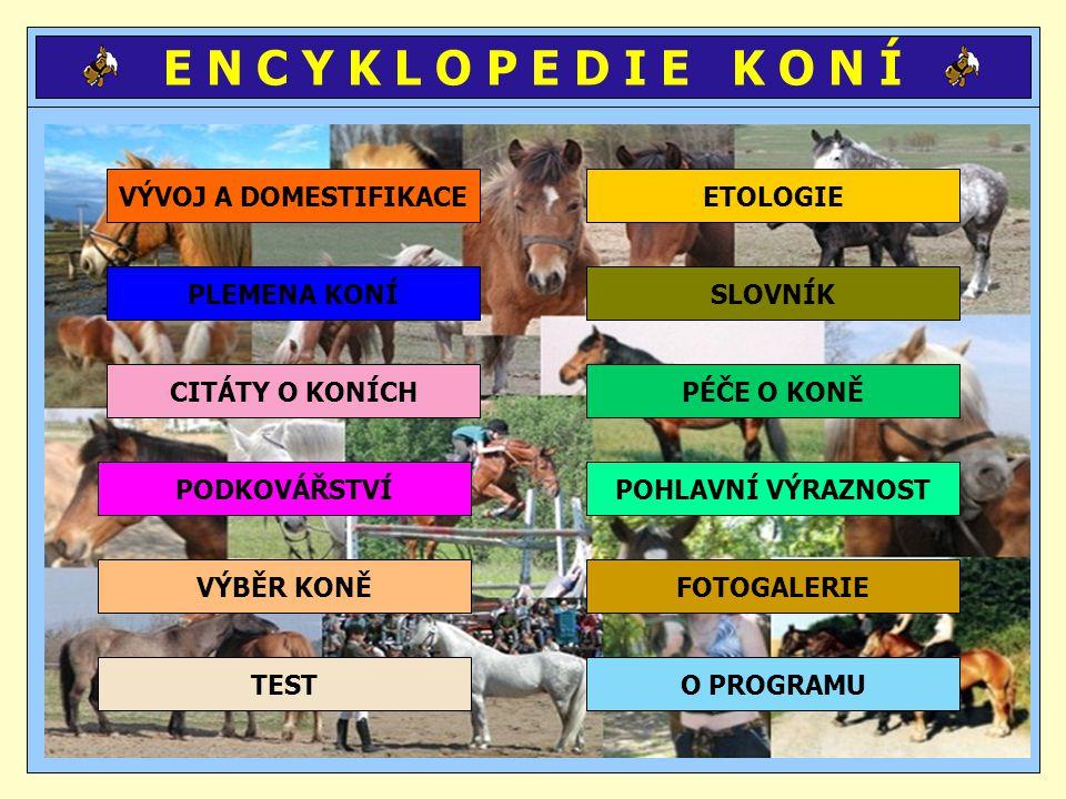 UŽITÉ ZDROJE www.sweb.cz\kone_a_jezdectvi www.kone.czechian.net www.romantik.cz\kone