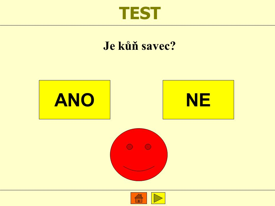 TEST Je kůň savec? ANONE