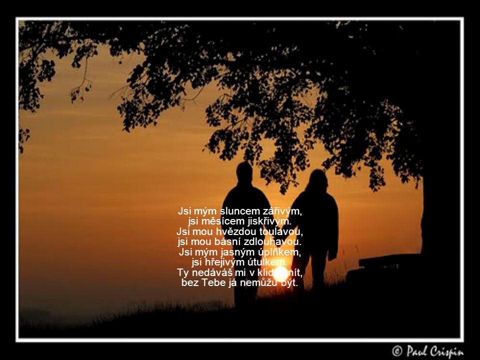 Jsi mým sluncem zářivým, jsi měsícem jiskřivým.Jsi mou hvězdou toulavou, jsi mou básní zdlouhavou.