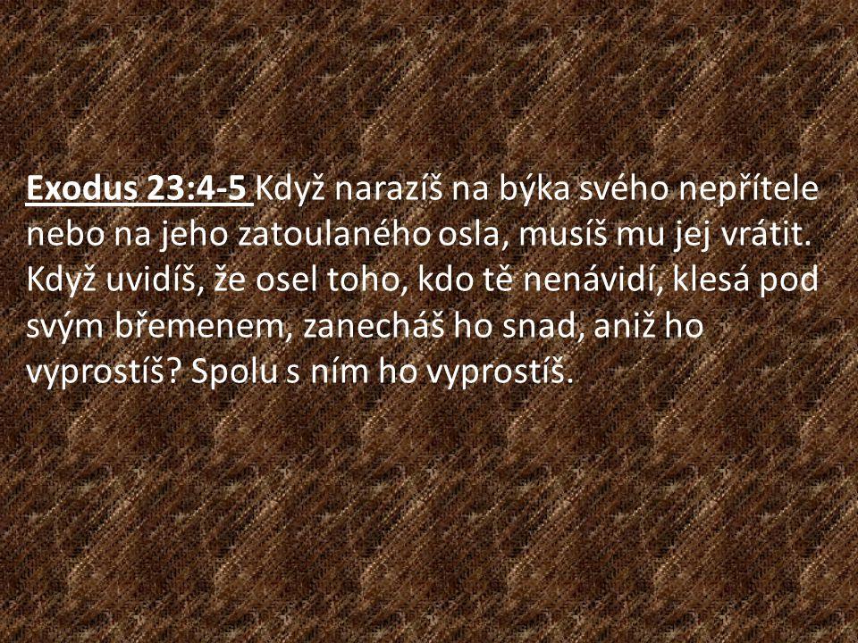 Exodus 23:4-5 Když narazíš na býka svého nepřítele nebo na jeho zatoulaného osla, musíš mu jej vrátit. Když uvidíš, že osel toho, kdo tě nenávidí, kle