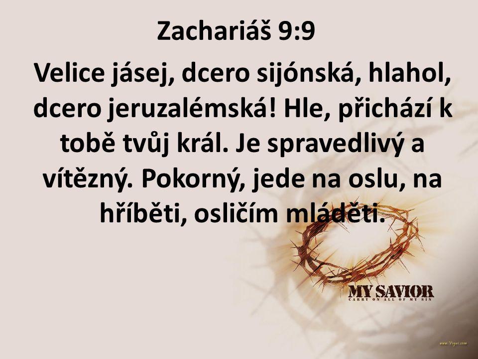 Zachariáš 9:9 Velice jásej, dcero sijónská, hlahol, dcero jeruzalémská! Hle, přichází k tobě tvůj král. Je spravedlivý a vítězný. Pokorný, jede na osl