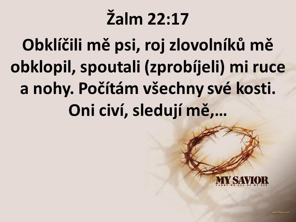 Žalm 22:17 Obklíčili mě psi, roj zlovolníků mě obklopil, spoutali (zprobíjeli) mi ruce a nohy. Počítám všechny své kosti. Oni civí, sledují mě,…
