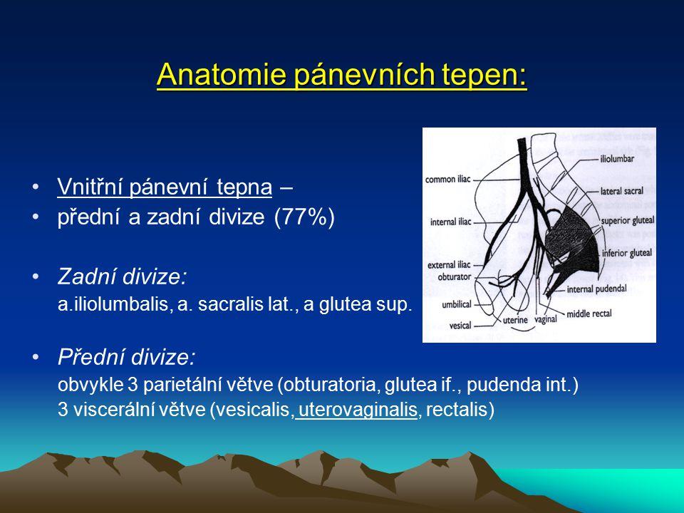 Anatomie pánevních tepen: Vnitřní pánevní tepna – přední a zadní divize (77%) Zadní divize: a.iliolumbalis, a.