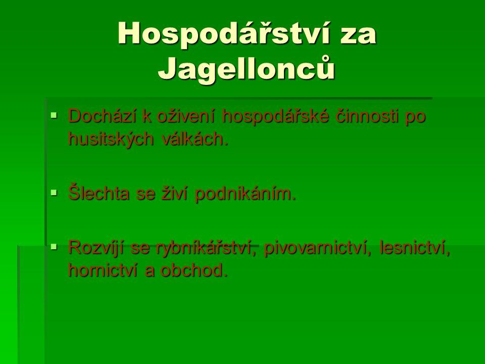 Hospodářství za Jagellonců  Dochází k oživení hospodářské činnosti po husitských válkách.  Šlechta se živí podnikáním.  Rozvíjí se rybníkářství, pi