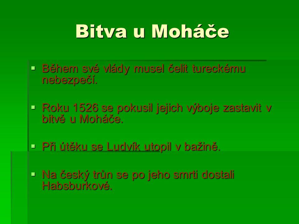 Bitva u Moháče  Během své vlády musel čelit tureckému nebezpečí.  Roku 1526 se pokusil jejich výboje zastavit v bitvě u Moháče.  Při útěku se Ludví