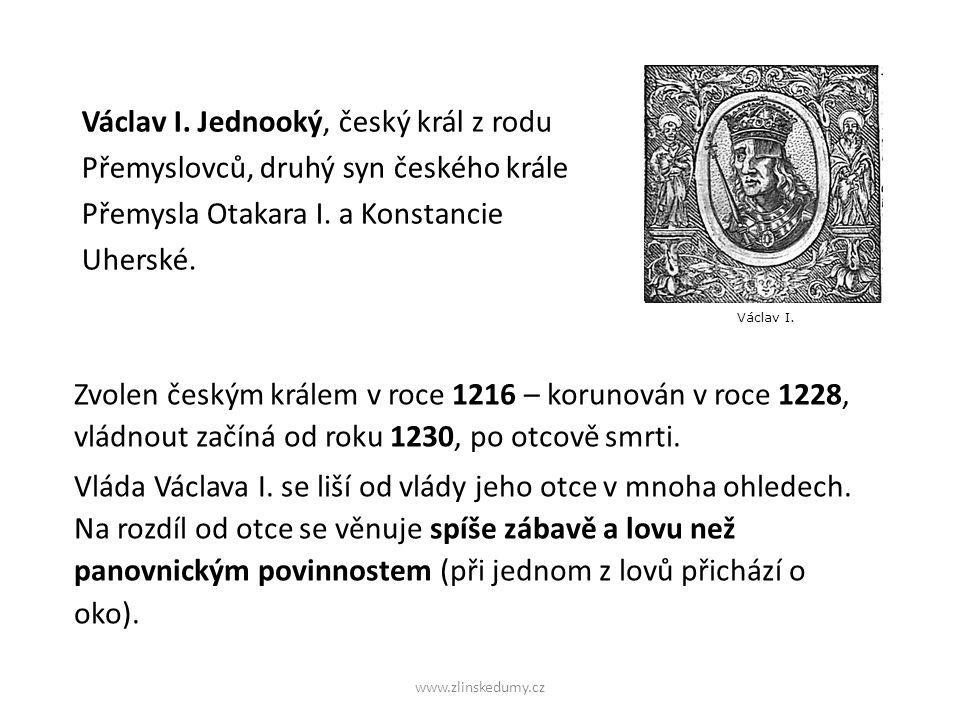 Václav I. Jednooký, český král z rodu Přemyslovců, druhý syn českého krále Přemysla Otakara I.
