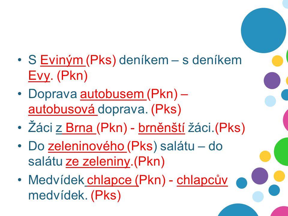 S Eviným (Pks) deníkem – s deníkem Evy. (Pkn) Doprava autobusem (Pkn) – autobusová doprava. (Pks) Žáci z Brna (Pkn) - brněnští žáci.(Pks) Do zeleninov