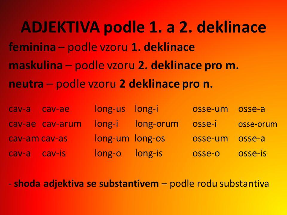 ADJEKTIVA podle 1.a 2. deklinace feminina – podle vzoru 1.
