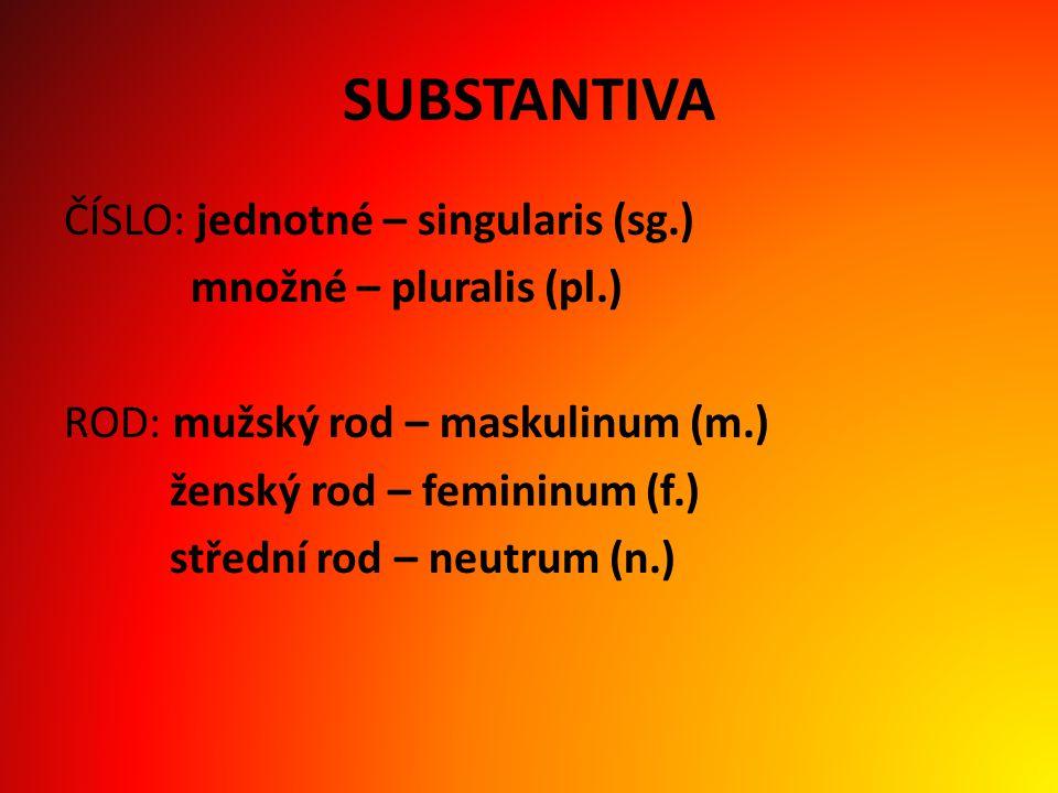 SUBSTANTIVA ČÍSLO: jednotné – singularis (sg.) množné – pluralis (pl.) ROD: mužský rod – maskulinum (m.) ženský rod – femininum (f.) střední rod – neutrum (n.)