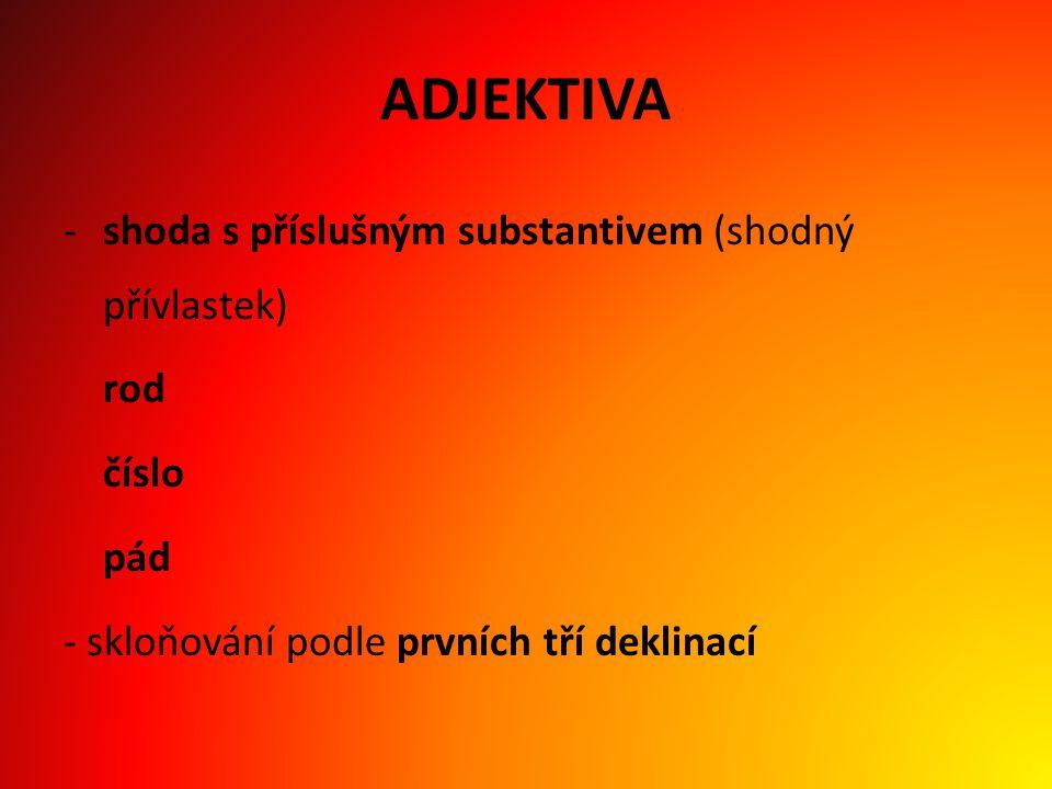 1.DEKLINACE – A-kmeny latinská substantivavzor: vena, venae f.