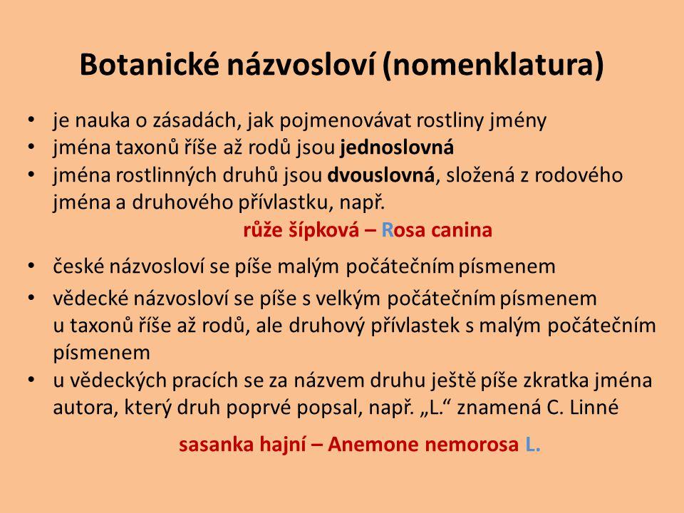 Botanické názvosloví (nomenklatura) je nauka o zásadách, jak pojmenovávat rostliny jmény jména taxonů říše až rodů jsou jednoslovná jména rostlinných