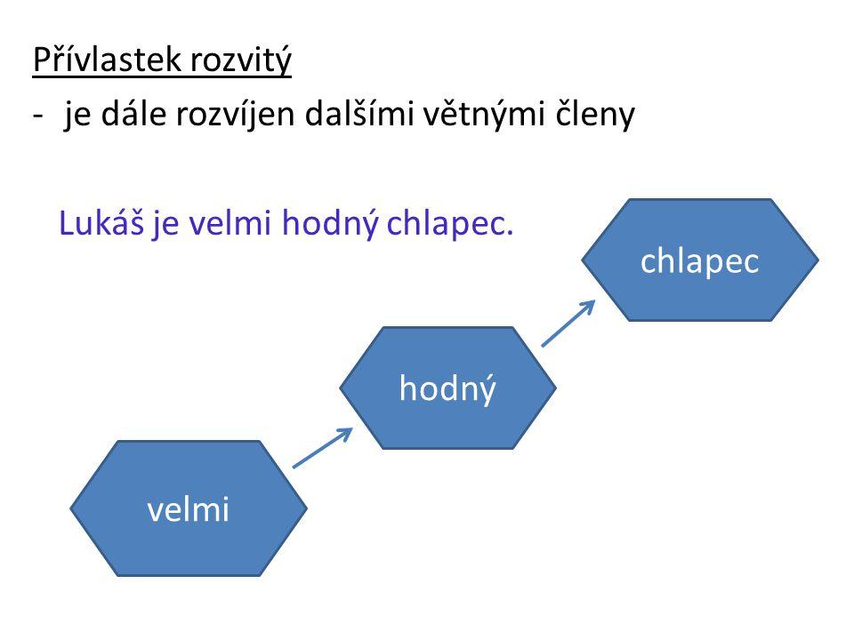 U jednoho podstatného jména může být i několik přívlastků, vztahy mezi jednotlivými přívlastky mohou být různé.