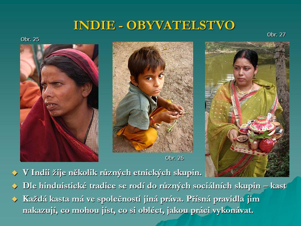  V Indii žije několik různých etnických skupin.  Dle hinduistické tradice se rodí do různých sociálních skupin – kast  Každá kasta má ve společnost