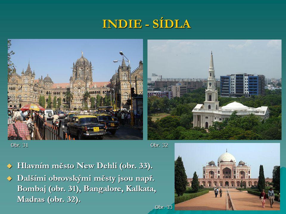  Hlavním město New Dehli (obr. 33).  Dalšími obrovskými městy jsou např. Bombaj (obr. 31), Bangalore, Kalkata, Madras (obr. 32). INDIE - SÍDLA Obr.