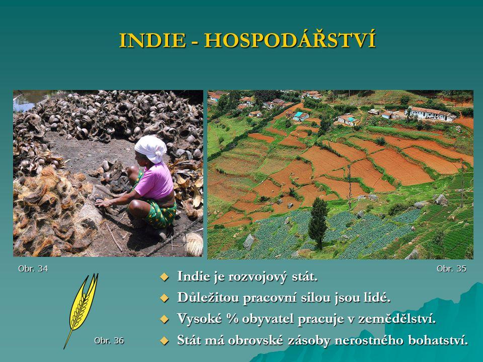  Indie je rozvojový stát.  Důležitou pracovní silou jsou lidé.  Vysoké % obyvatel pracuje v zemědělství.  Stát má obrovské zásoby nerostného bohat
