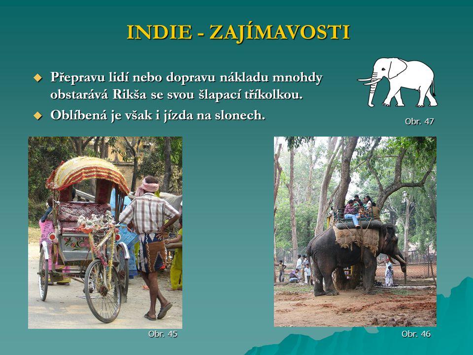 INDIE - ZAJÍMAVOSTI Obr. 45 Obr. 46  Přepravu lidí nebo dopravu nákladu mnohdy obstarává Rikša se svou šlapací tříkolkou.  Oblíbená je však i jízda