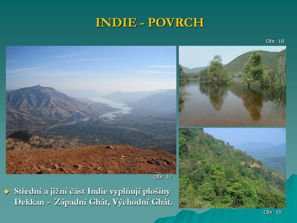  Střední a jižní část Indie vyplňují plošiny Dekkan - Západní Ghát, Východní Ghát. INDIE - POVRCH Obr. 18 Obr. 19 Obr. 17