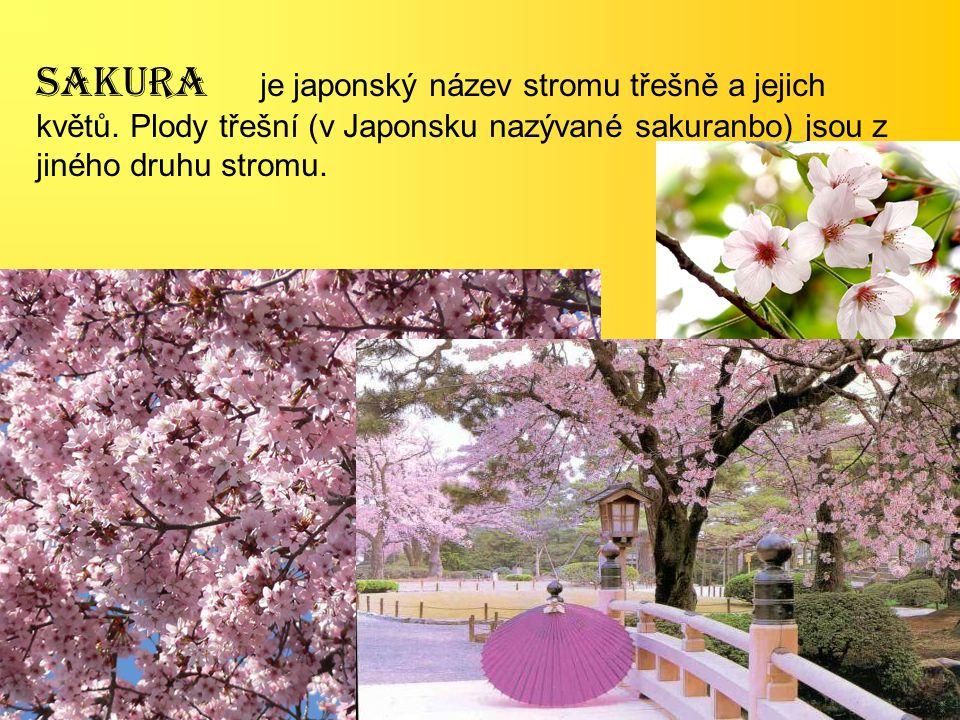 SAKURA je japonský název stromu třešně a jejich květů. Plody třešní (v Japonsku nazývané sakuranbo) jsou z jiného druhu stromu.