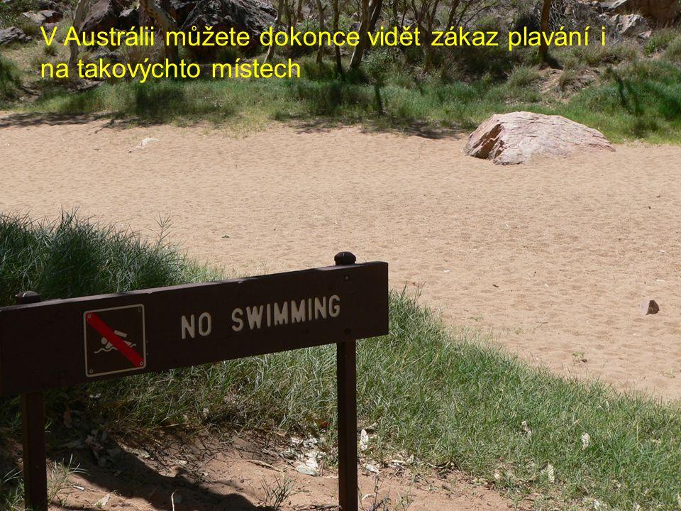 V Austrálii můžete dokonce vidět zákaz plavání i na takovýchto místech