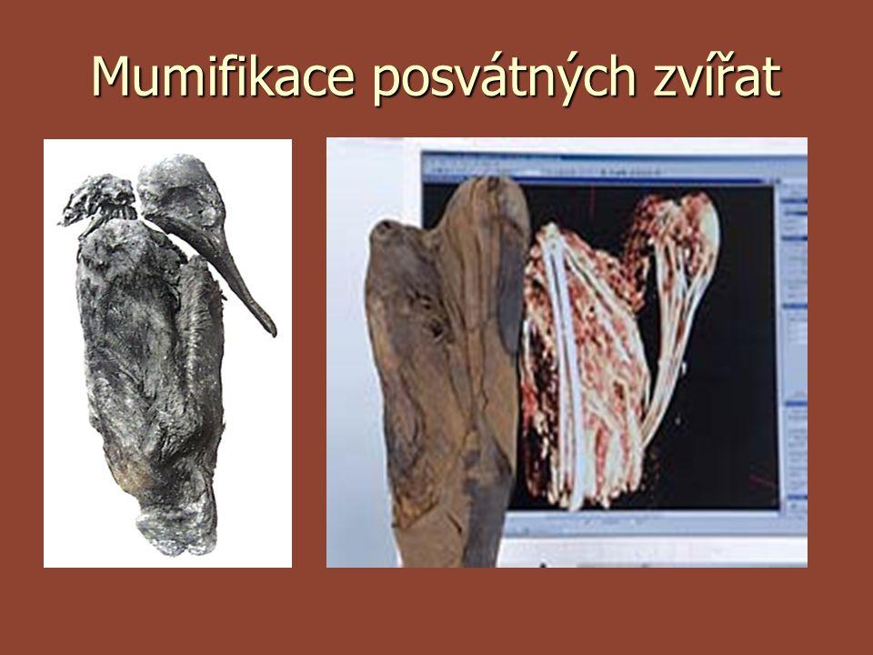 Mumifikace posvátných zvířat