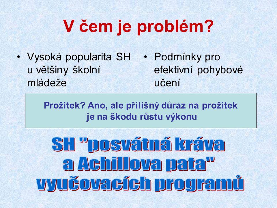 V čem je problém? Vysoká popularita SH u většiny školní mládeže Podmínky pro efektivní pohybové učení Prožitek? Ano, ale přílišný důraz na prožitek je