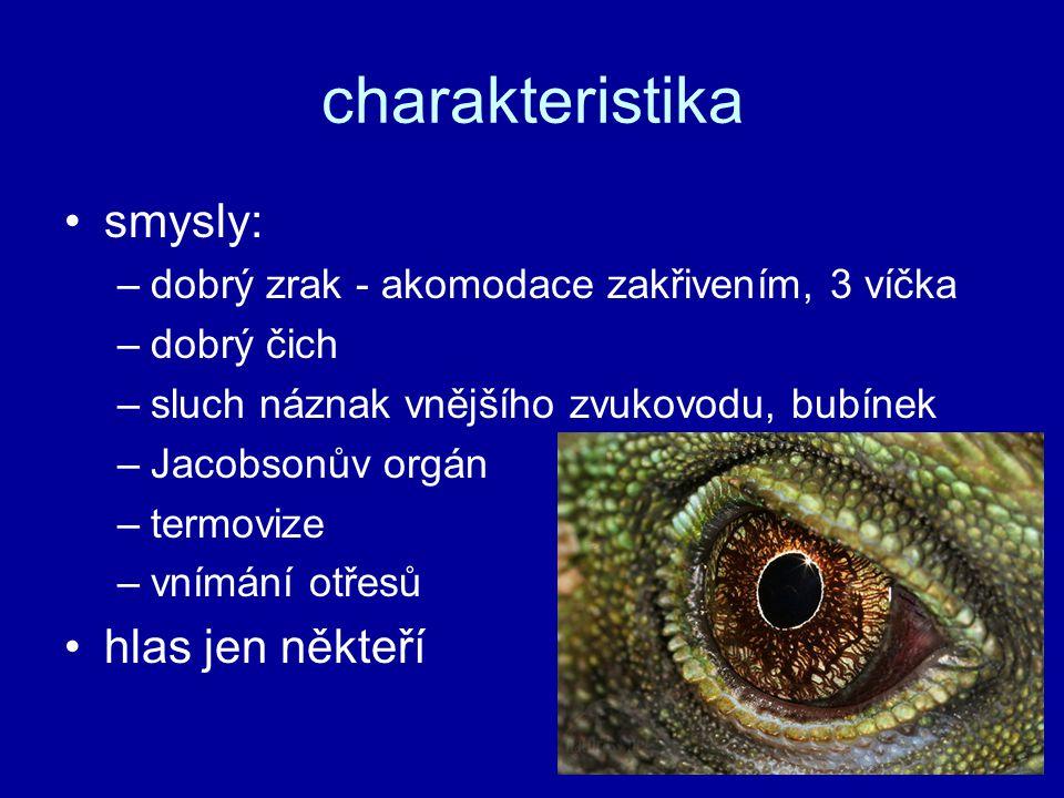křížovka 1.malí ještěři s velkými hlavami 2.v nebezpečí odlamují ocásek 3.plazi s krunýřem 4.zástupce krokodýlů 5.suchozemští veleještěři 6.společný vývod soustavy trávicí, vylučovací a pohlavní 7.beznohý ještěr 8.jiný název pro brejlovce 9.čím se rozmnožuje většina plazů 10.