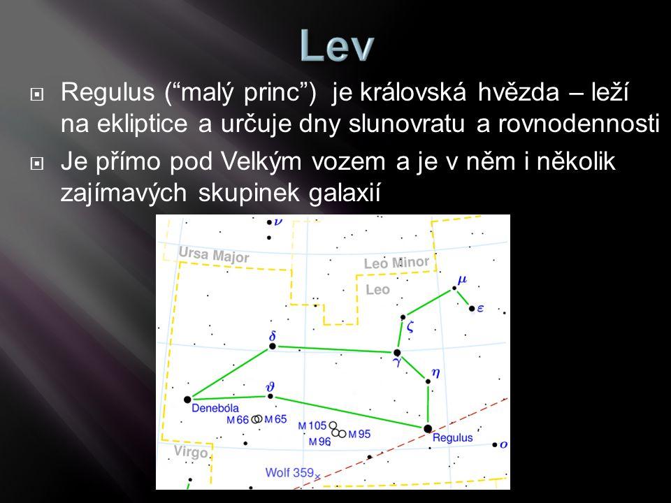 """ Regulus (""""malý princ"""") je královská hvězda – leží na ekliptice a určuje dny slunovratu a rovnodennosti  Je přímo pod Velkým vozem a je v něm i něko"""
