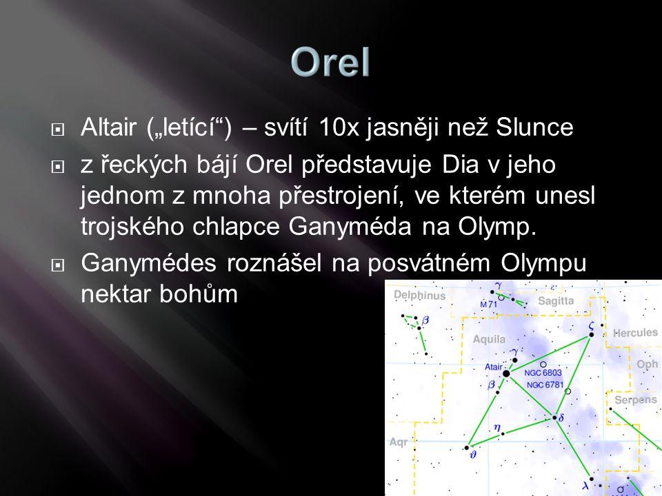 """ Altair (""""letící"""") – svítí 10x jasněji než Slunce  z řeckých bájí Orel představuje Dia v jeho jednom z mnoha přestrojení, ve kterém unesl trojského"""