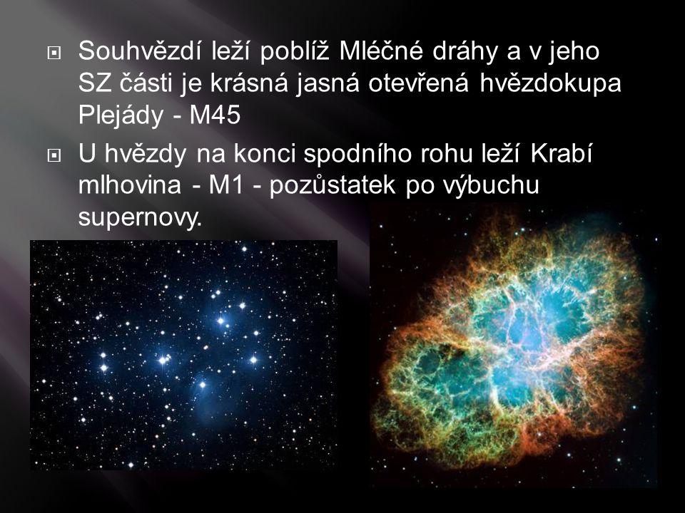 Souhvězdí leží poblíž Mléčné dráhy a v jeho SZ části je krásná jasná otevřená hvězdokupa Plejády - M45  U hvězdy na konci spodního rohu leží Krabí