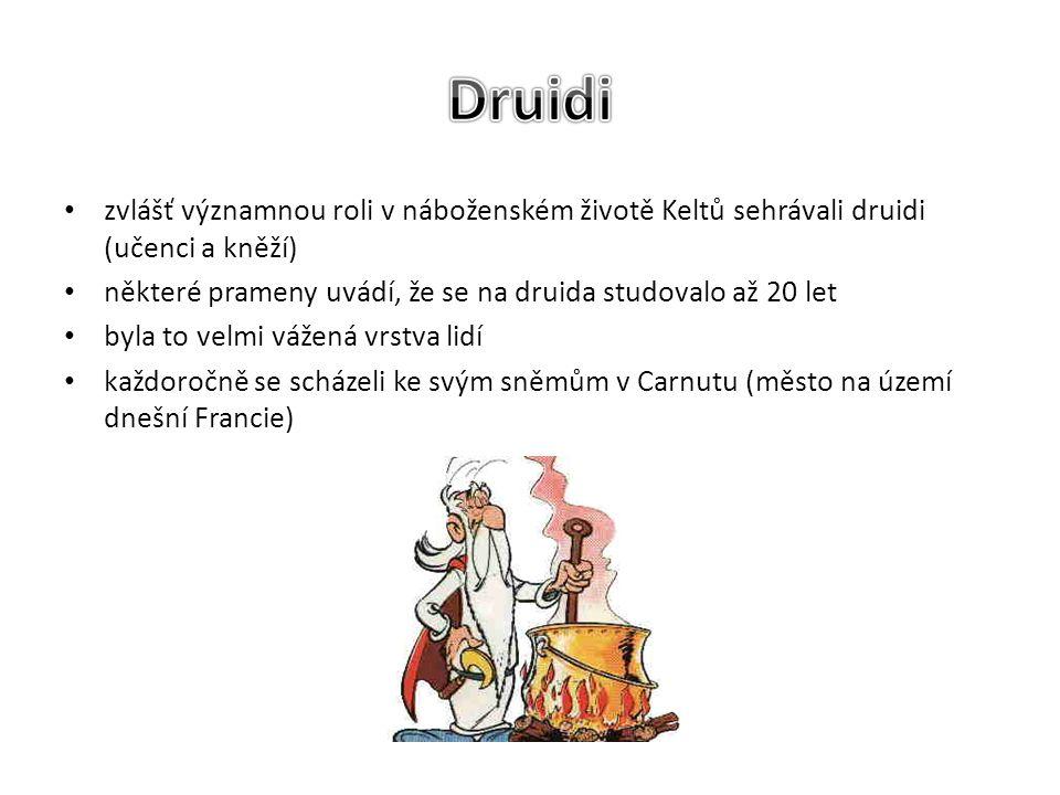 zvlášť významnou roli v náboženském životě Keltů sehrávali druidi (učenci a kněží) některé prameny uvádí, že se na druida studovalo až 20 let byla to velmi vážená vrstva lidí každoročně se scházeli ke svým sněmům v Carnutu (město na území dnešní Francie)